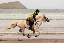 Dingle Horse Riding, Dingle, Ireland