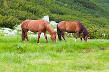 Parcul National Retezat, Rausor, Romania