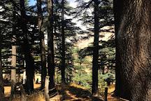 Explore Lebanon Tours, Byblos, Lebanon