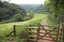 Tarr Steps, Exmoor National Park, United Kingdom