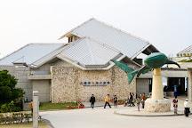 Okinawa Churaumi Aquarium, Motobu-cho, Japan