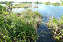 Capt Mitch's - Everglades Private Airboat Tours, Everglades City, United States