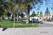 Central Square, Cambridge, United States