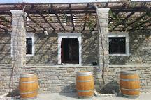 Moraitis Winery, Naoussa, Greece