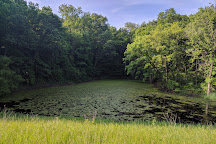 Kettle Moraine State Forest Northern Unit, Campbellsport, United States
