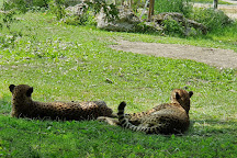 Zoo Schmiding, Wels, Austria