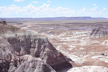 Blue Mesa, Petrified Forest National Park, United States