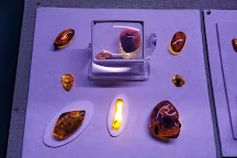 Amber World Museum, Santo Domingo, Dominican Republic