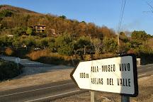 Abejas del Valle La Casa de las Abejas, Poyales del Hoyo, Spain
