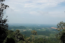 Bukit Batu Lebah Recreational Forest, Melaka, Malaysia