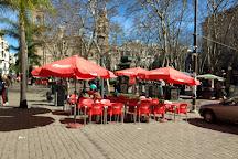 Plaza Matriz, Montevideo, Uruguay