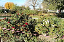 Rose Garden at Mesa Community College, Mesa, United States