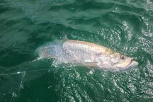 Tarpon Diem, Key West, United States