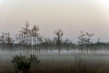 Big Cypress National Preserve, Ochopee, United States