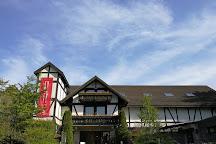 Rokko International Musical Box Museum, Kobe, Japan