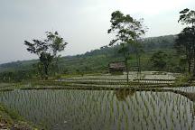 Bogor Tours, Bogor, Indonesia
