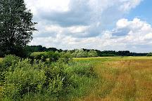 Bialowieski Park Narodowy, Bialowieza, Poland