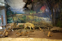 Dickson Mounds Museum, Lewistown, United States