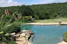 Spioenkop Nature Reserve, Winterton, South Africa