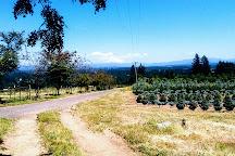 Willamette Valley, Portland, United States