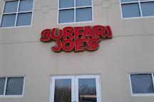 Surfari Joe's Indoor Wilderness Water Park, Watervliet, United States