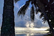 Takitumu Conservation Area, Rarotonga, Cook Islands