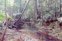 Ulidarra National Park, Korora, Australia