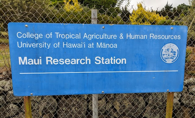 Maui Research Station