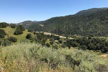 Hollister Hills State Vehicular Recreation Area, San Juan Bautista, United States