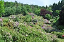 Conca dei Rododendri, Trivero, Italy