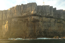 Dive Jervis Bay, Huskisson, Australia