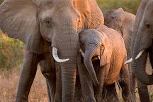 Chobe Day Trips, Kasane, Botswana