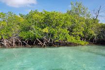 El Farito, Isla Mujeres, Mexico