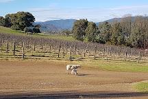 Ringer Reef Winery, Porepunkah, Australia