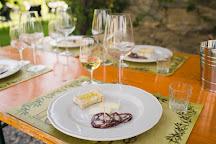 Famiglia Buccelletti Winery, Castiglion Fiorentino, Italy