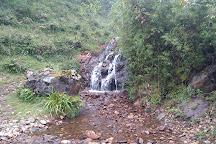 Sandakphu, Singalila National Park, India
