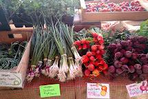 Burlington Farmers Market, Burlington, United States