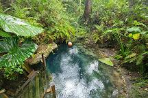 Paradise Springs, Ocala, United States