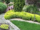 Компания ВудЛэнд - Декоративные растения для ландшафтного дизайна, улица 8 Марта на фото Старого Оскола