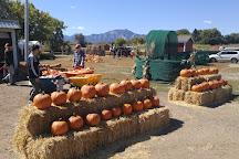 Cottonwood Farms, Boulder, United States