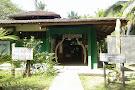 Sea Turtle Conservancy Visitor Center