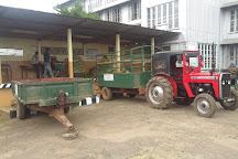Pedro Tea Factory, Nuwara Eliya, Sri Lanka