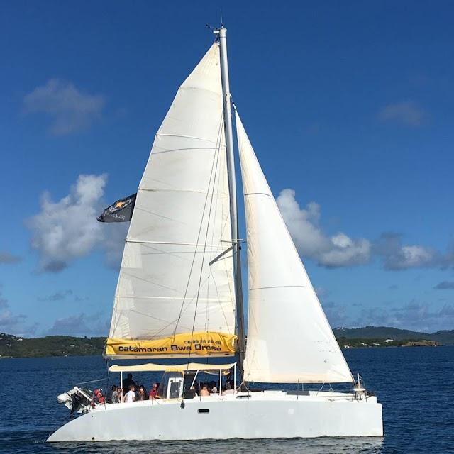 Catamaran Bwa Drésé Martinique