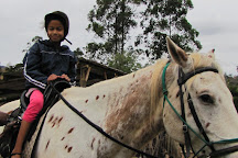 Giba Gorge Horse Trails, Durban, South Africa