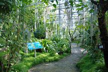 Jardin du Conservatoire Botanique National de Brest, Brest, France