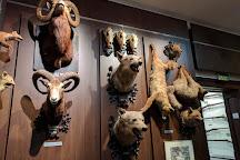 Muzeul de Vanatoare
