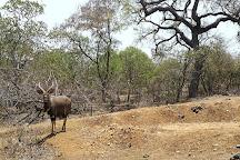 Majete Wildlife Reserve, Chikwawa, Malawi