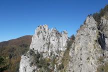 Kaltenbachwildnis, Gmunden, Austria
