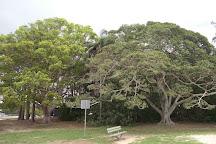 Chambers Island, Maroochydore, Australia
