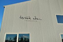 Brook Eden Vineyard, Lebrina, Australia